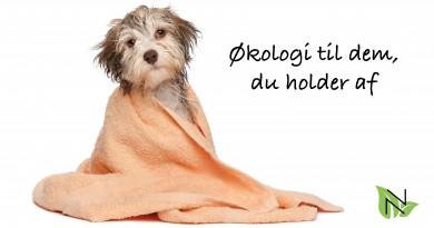 shampoo til ruhårede hunde, økologisk shampoo til ruhårede hunde, shampoo til hunde, hunde shampoo, økologisk hundeshampoo, hundekurv, miljøvenlig hundekurv, hundekurv i miljøvenligt materiale, hundekurv i genbrugsmateriale, 100% genbrugs materiale, hundekurv 100% genbrugs materiale, Hundekurv Scruffs Monaco, Scruffs Monaco, petdreams.dk, petdreams, petdreams