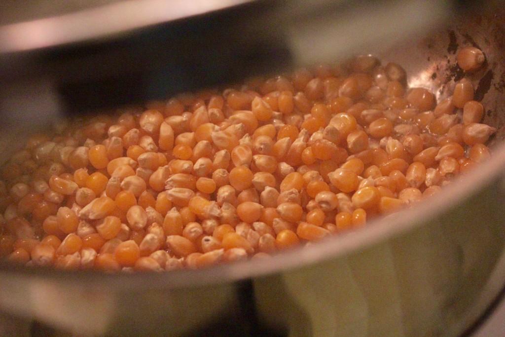 Tilsæt de tørret majs-kerner og sæt låg på gryden. Tag ikke låget af igen før popcornene er færdige.