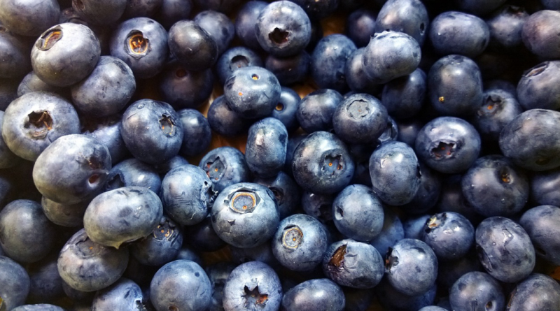 blåbær, gode egenskaber ved blåbær, derfor skal du spise masser af blå bær, blåbær imod kræft, blåbær imod slidgigt, frugter imod slidgigt, blåbær bedre hukommelse