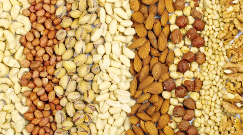 økologiske nødder, nødder økologiske, økologiske mandler, økologiske hasselnødder, køb økologiske nødder