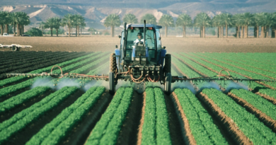 fødevare med flest giftstoffer, giftstoffer i mad, mad med flest giftstoffer i, hvorfor skal man vælge økologisk, økologiske madvare,