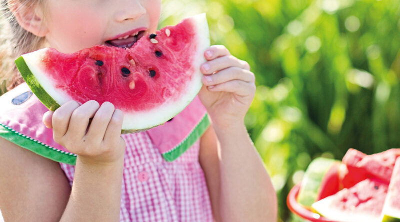 guide til den bedste vandmelon, find den bedste vandmeloon, find den bedste melon, dansk sommer, guide til naturlig livsstil, naturligt liv,